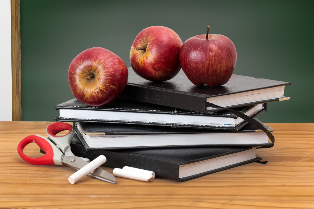 Teachers and Staff - Employment